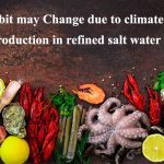 Food habit may Change due to climate change; Seaweed production in refined salt water is growing.