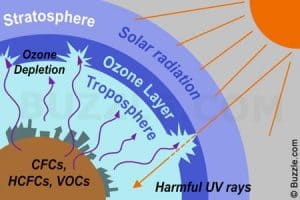 Ozone Hole – A Wonderful Discovery And Survival of The Earth