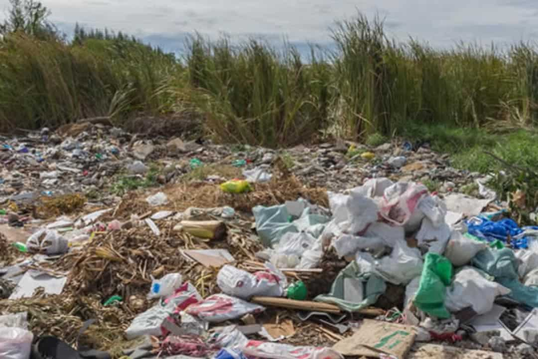 Some Positive Signs We Are looking Now To Build A Polythene and Plastic-free World in the recent future