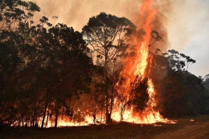 Bushfires are still burning in 100 places on Australia's south coast