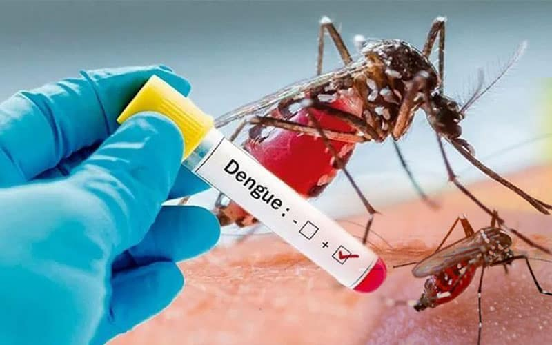 Dengue Is Spreading Alongside With Covid-19