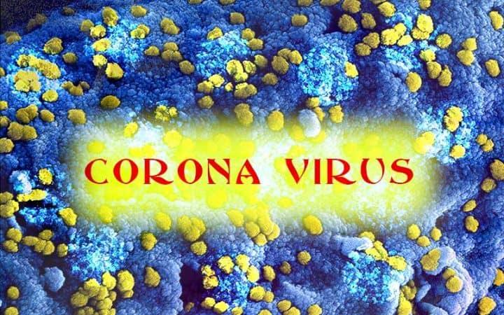 Global Corona virus Situation: Scheme 2