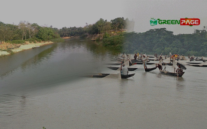 The River Halda in Bangladesh is Now Suitable for Fish Breeding