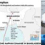 Super Cyclone Amphan Damage to Mangoes and Litchis worth more BDT.6.00 b in Bangladesh