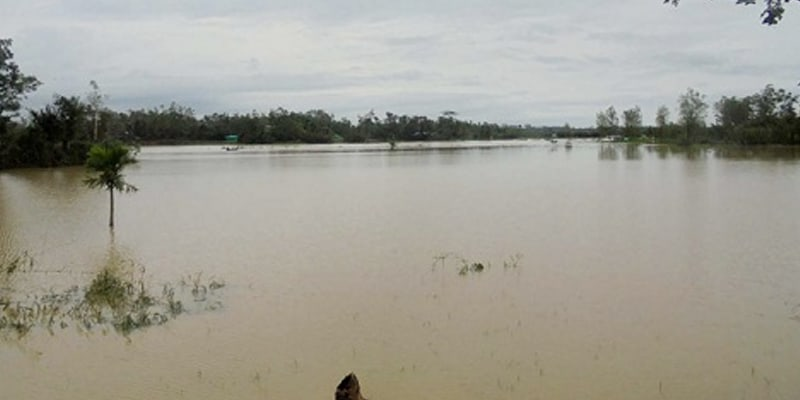 Fish Worth BDT.4.5 Billion Swept Away in the First phase Flood in Bangladesh