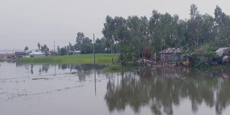 Lalmonirhat Inundated by flood Water