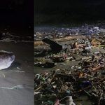The Bay of Bengal Returns the Local-dumping Garbage onto Cox's Bazar Sea Beaches