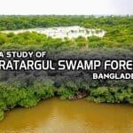 A study of Ratargul Swamp Forest, Bangladesh