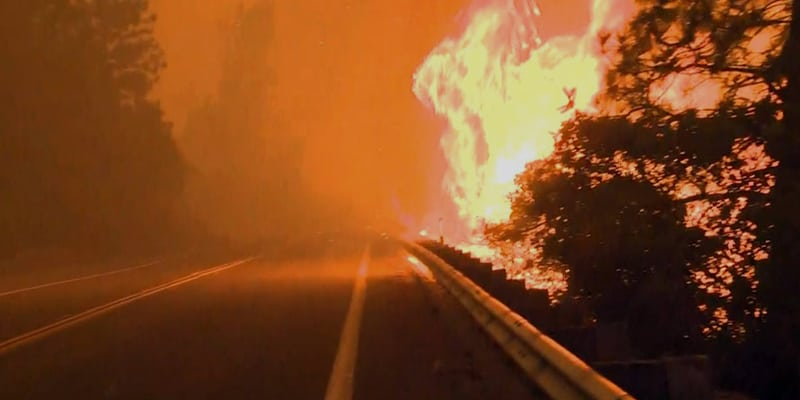 Twenty-five miles of green forest burned in a day in California