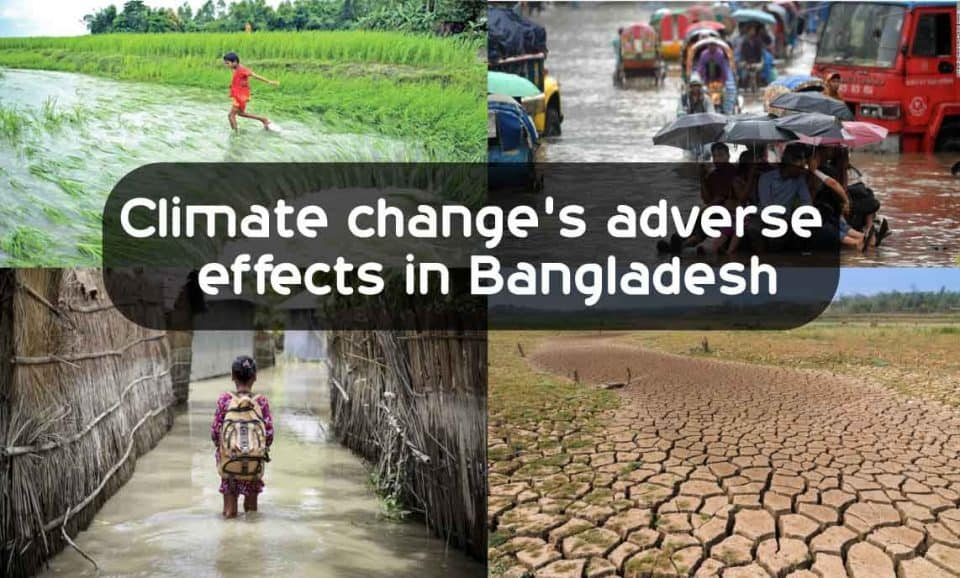 Climate change's adverse effects in Bangladesh