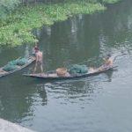 Fishing in magic nets in Gopalganj, Local species are under threat