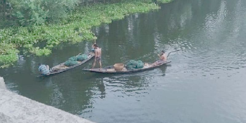 Fishing in magic nets in Gopalganj, Local species are under threat