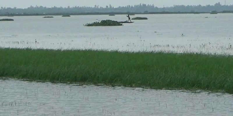 The erosion of the Dharla and the Brahmaputra destroyed hundreds of settlements in seven days and submerged thousands of hectares of crops