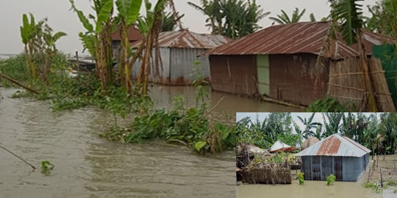 The water of Jamuna is above the danger level in Bogra, hundreds of hectares of crop fields are flooded