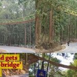 The first Eco Bridge at road crossing for reptiles in India