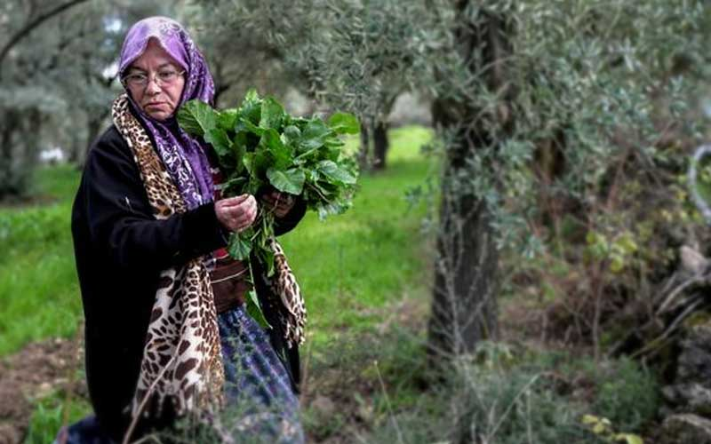A 64-year-old woman in Turkey is fighting for the environment