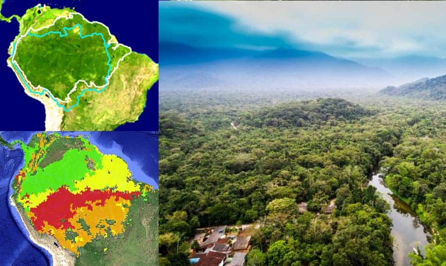 The world lungs Amazon Forest is wounded