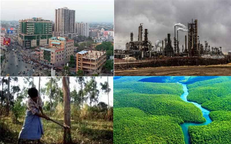 There is no alternative to forest protection to save the environment
